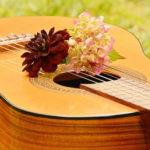 柏市で初心者からプロ志望まで納得して通える安いギター教室28選
