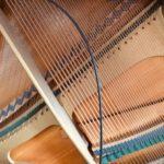 スガナミ楽器の口コミや概要情報を紹介