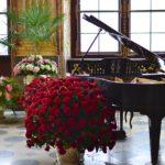 茨城県で初心者からプロ志望まで安心して通える安いピアノ教室5選