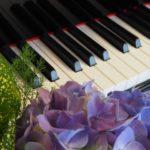 群馬県で効率よく学習可能な安いピアノ教室4選