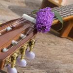 プロ志望の人も納得!秋葉原で効率よく学習できる安いギター教室29選